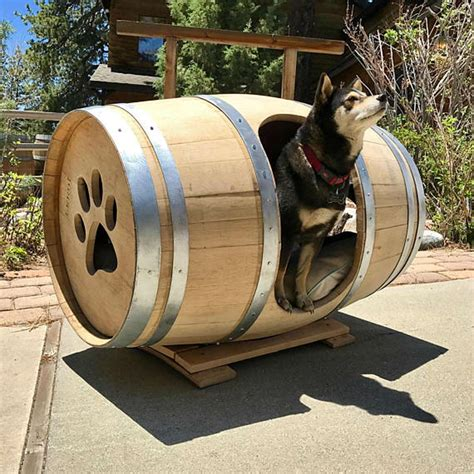incredible dog houses 12 incredible dog houses for your best friend the family handyman