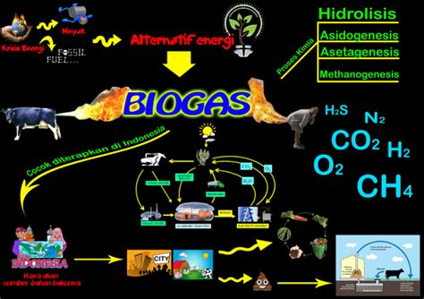 bio gas adalah sumber energi stand up and fight energi alternatif biogas dan penerapannya