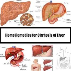 home remedies for liver digestive system anatomy chapter 35 digestive and