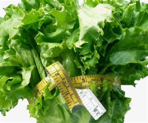 alimenti che aiutano a dimagrire dieta gli alimenti che fanno bene e aiutano a dimagrire