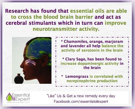 Detox Blood Brain Barrier by Best 25 Essential Oils For Depression Ideas On