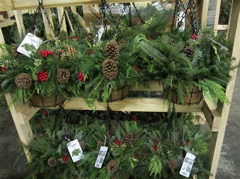 outdoor evergreen decorations the home depot
