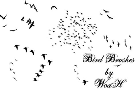 30 free bird themed photoshop brush sets blueblots com
