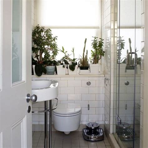plants for bathroom with no windows 107 best images about decorative window decor ideas on