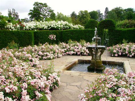 backyard rose gardens file hever castle rose garden with fountain jpg wikipedia