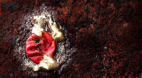 himalayan salt l hazard ginseng archives honeycolony