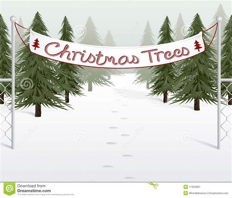 christmas tree lot business tree lot stock image image 17253961