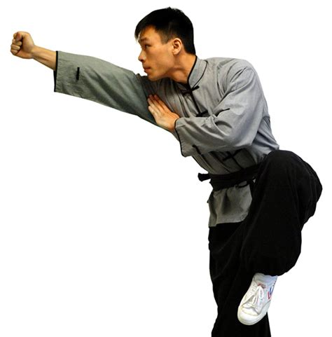 a brief history of the martial arts east asian fighting styles from kung fu to ninjutsu brief histories books reflecting on traditional martial arts past