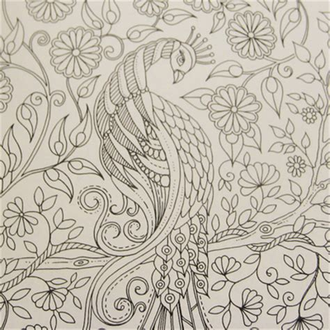 secret garden coloring book out of stock coloring pages on dover publications secret