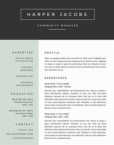 the best cv template best resume format 2017 template learnhowtoloseweight net