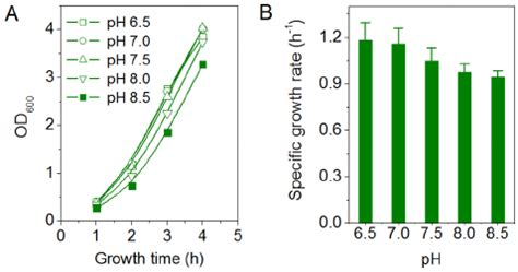 effect of alkaline phs on the cell growth of e coli bl21