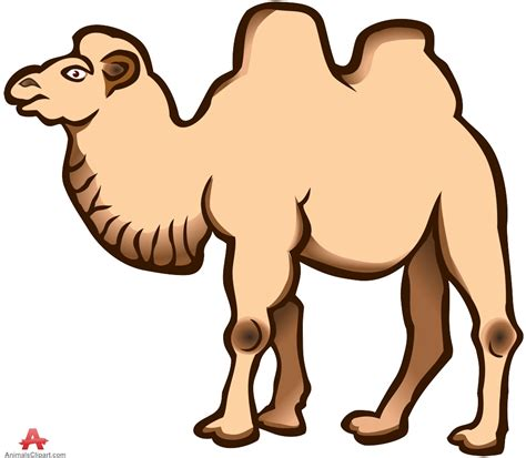 clipart photo camel clipart clipart panda free clipart images