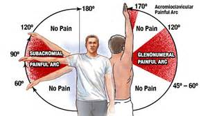 States that if pain in the shoulder is present when your upper arm