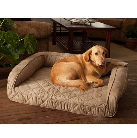 costco dog couch kirkland dog sofa bed good bolster dog bed costco costco