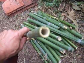 Fabriquer Des Objets En Bambou by Ateliers Jardinage Ecologique Et Creatif Bio66