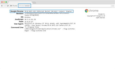 check flash version chrome how to check chrome version on desktop and mobile tech buzz