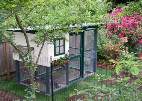 diy backyard chicken coop diy backyard chicken coop apartment planning