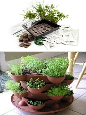 Gardeners Supply Stack And Grow 17 Best Images About Herb Garden On Herb Pots