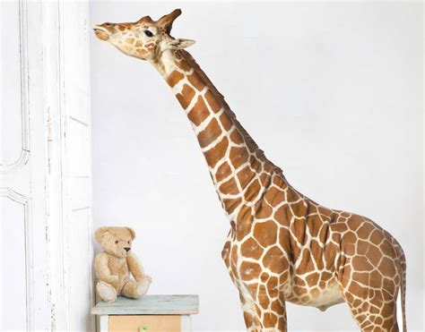 wall stickers giraffe giraffe wall decal your decal shop