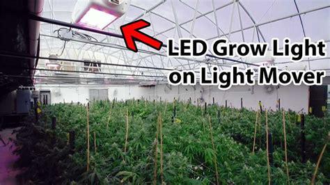 greenhouse led grow lights do my cannabis plants need side lighting grow easy