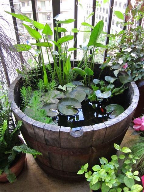 Patio Water Garden by Outdoor Goldfish Containers Search Garden