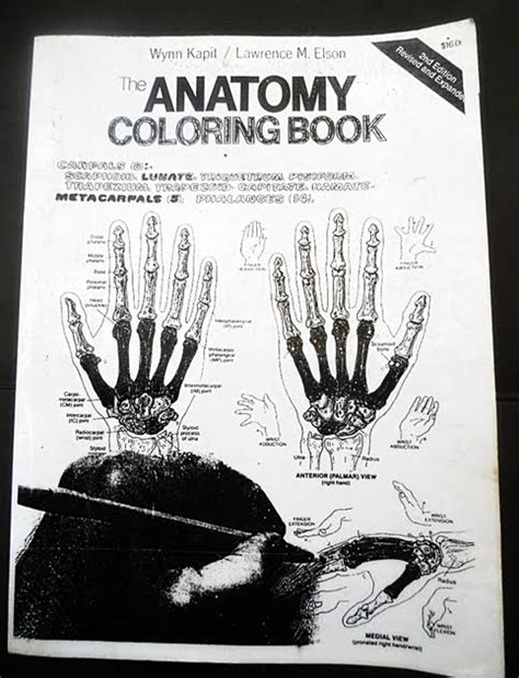 kapit anatomy coloring book free bursabukubandung the anatomy coloring book kapit