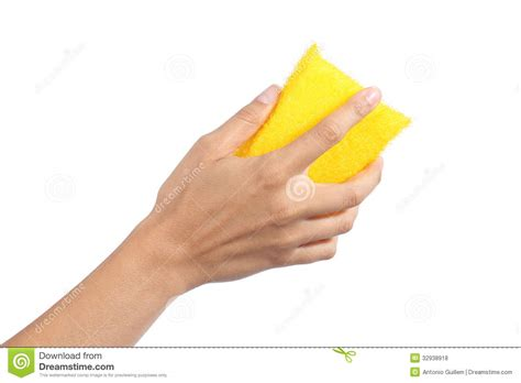amazing of stock photo hand with sponge cleaning bathroom woman hand holding a scourer royalty free stock photos