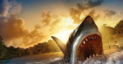 wallpaper foto ikan hiu menyeramkan