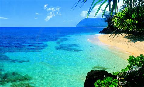 Search In Hawaii Hawaii 0 Jpg