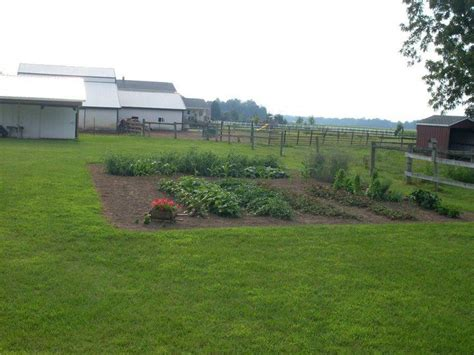 amish gardens images  pinterest amish country