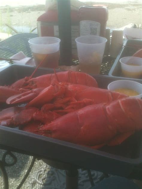 estes lobster house estes lobster house harpswell me yelp lobster house