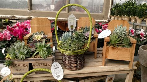 Lowes Giveaway 2017 - lowe s greenhouse to celebrate earth day plants classes and earth tree giveaway