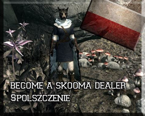 skyrim mod skooma dealer become a skooma dealer polish translation at skyrim nexus