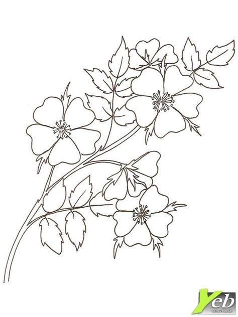 Coloriage Jolie Fleur Sans 233 Pine Dans La Cat 233 Gorie Dessin De Coeur Imprimer Coloriage De Coeur Mandala Colorier Coeur Flamme Mandala Gratuit L