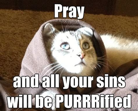 Meme Kitty - best of the kitty jesus meme 14 pics pleated jeans