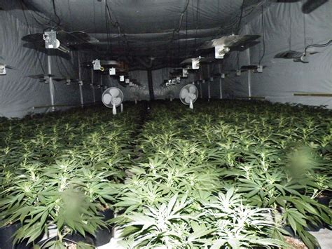 grow rooms for underground grow room car interior design