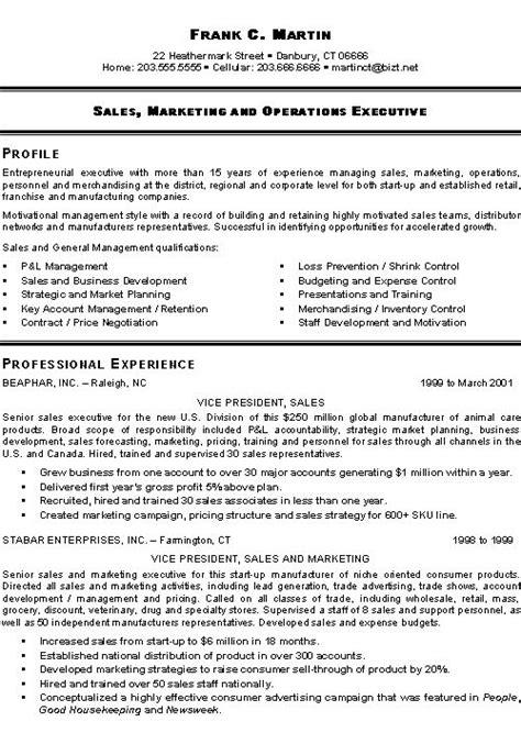 marketing executive resume example