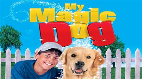 magic puppy my magic