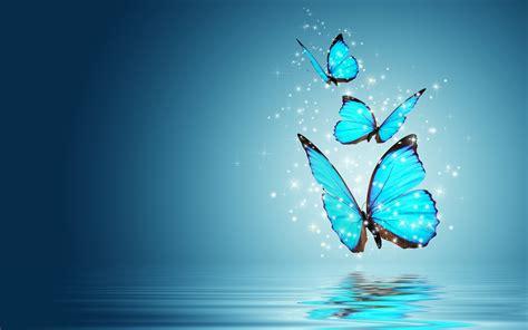 wallpaper iphone 6 butterfly blue butterfly water reflection wallpaper