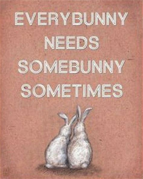 house bunny quotes bunny quotes quotesgram