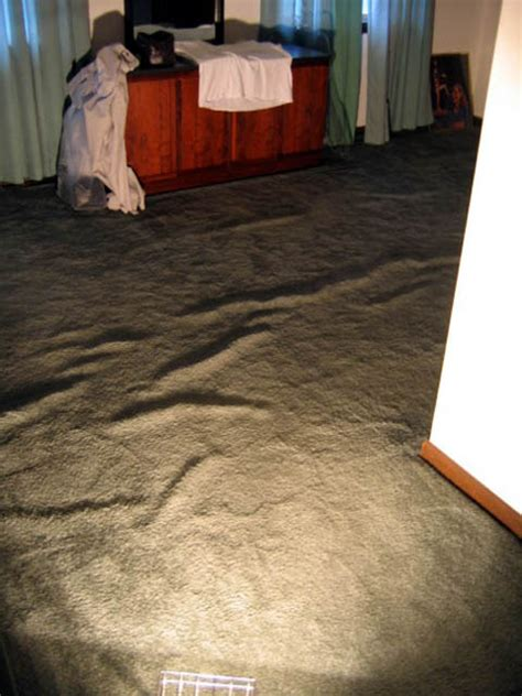 Buckled Carpet by Floorworks Inspection Services 187 Gallery Of Carpet Problems