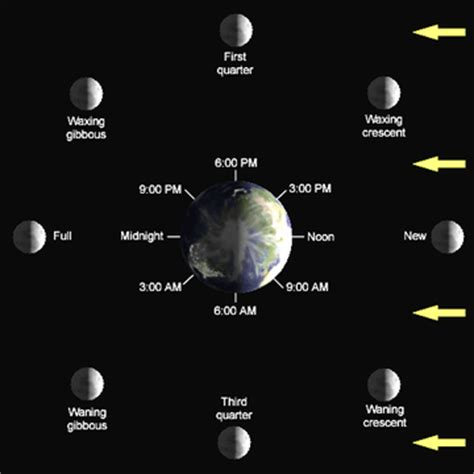 lunar phases diagram m 229 nefase