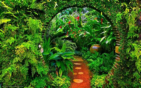 wallpaper of green house download wallpaper greenhouse plants garden free desktop