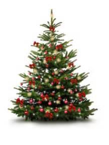 welche dekoration w 228 hle ich f 252 r meinen weihnachtsbaum