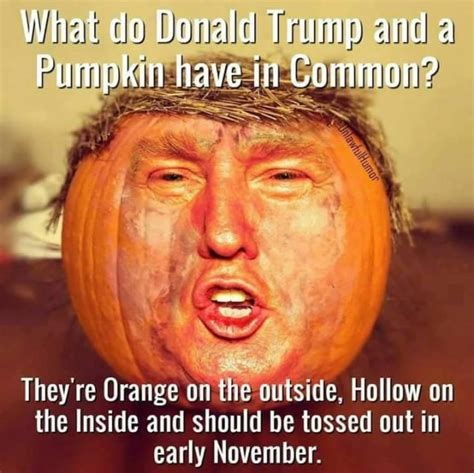 Sexy Halloween Meme - 25 best ideas about election memes on pinterest funny