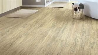 Linoleum Plank Flooring Vinyl Floors