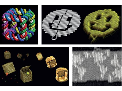 Dna Origami Nature - gene machines prospect magazine