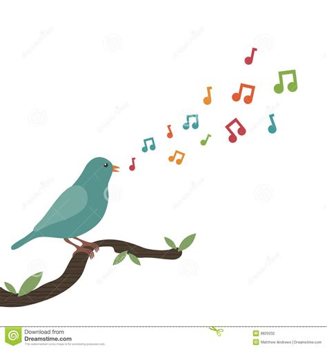 song bird stock photography image 9829332