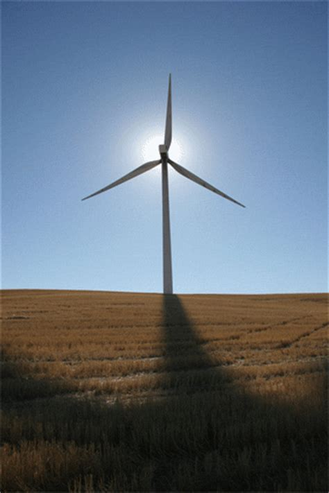 windmill gif find share  giphy