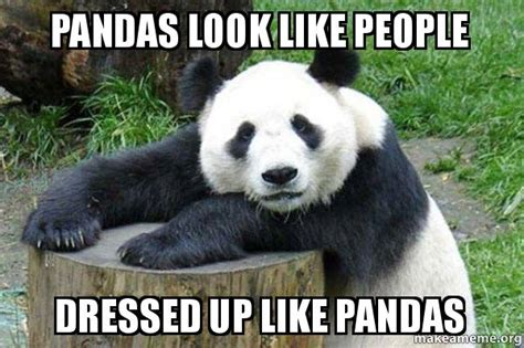 Sex Panda Meme - pandas look like people dressed up like pandas